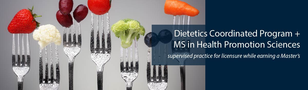 colorful fruits & vegetables on forks - Dietetics Coordinated Program + MS in Health Promotion Sciences - supervised practice for licensure while earning a Master's